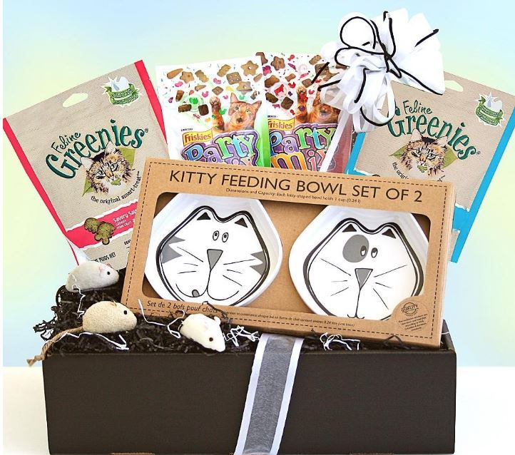 I love cats gift box