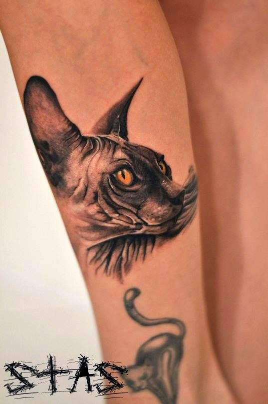 Cornish rex cat tattoo