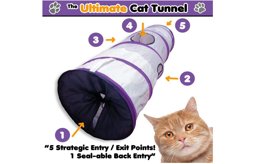 The ultimate cat tunnel multiple exits