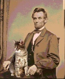 Abraham Lincoln's cat