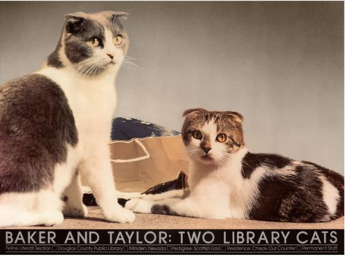 Baker & Taylor Library Cats